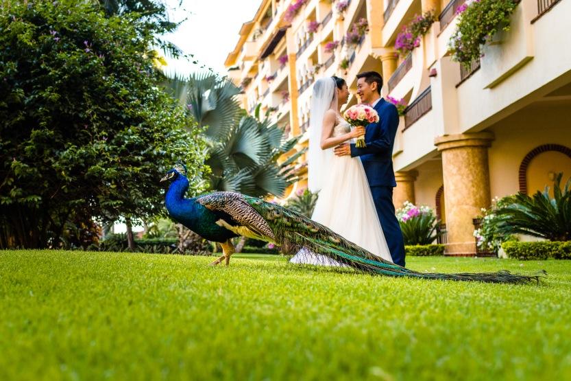 Linda & Daniel at the Velas Resort in Puerto Vallarta, Mexico.